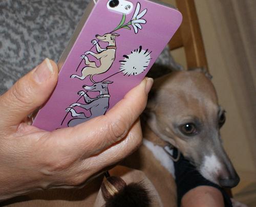 コルピちゃんとiPhoneケース